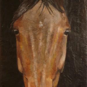 100% Horse: Sugar Pride. Maleri av Elisabeth Berggren Hansen