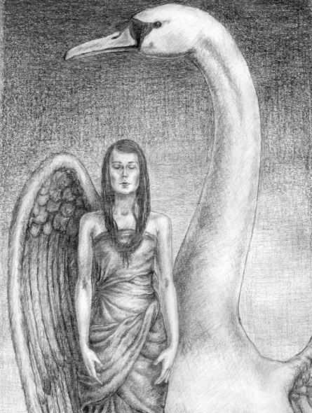 Swan - miniatyrbilde. Tegning av Elisabeth Berggren Hansen