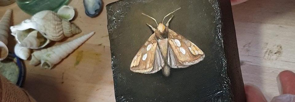 Fernissering av «The Golden Moth»