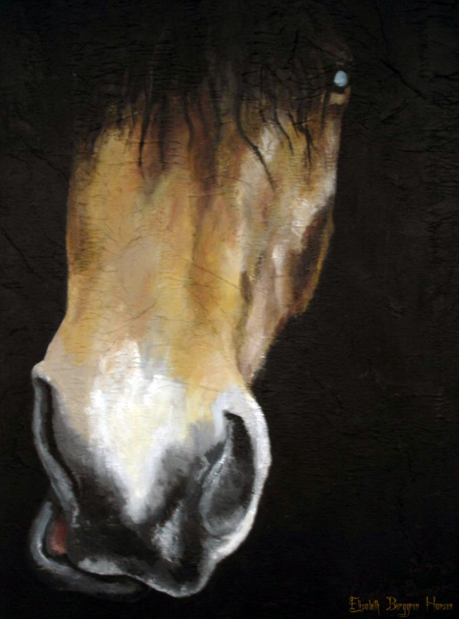 100% Horse: Balder. Maleri av Elisabeth Berggren Hansen