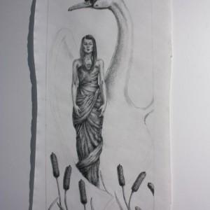 Swan - Prosess 03. Tegning av Elisabeth Berggren Hansen