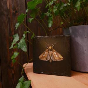 The Golden Moth stående i et miljø, oljemaleri av Elisabeth Berggren Hansen